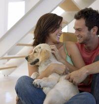 Как строить свою счастливую семью?